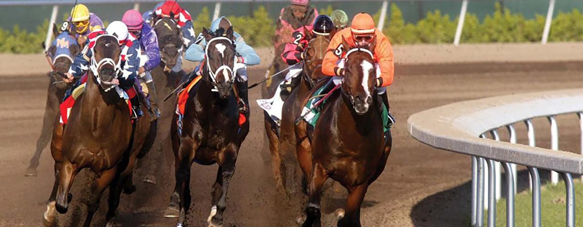 racing-horses1920